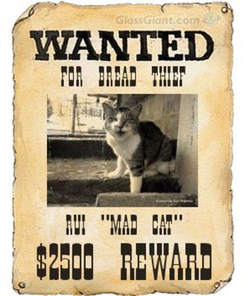 Wantedposter_2